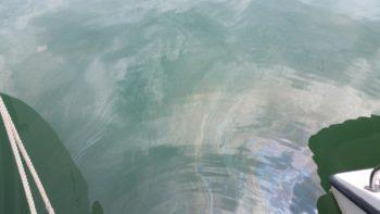 Dieselfilm auf dem Wasser