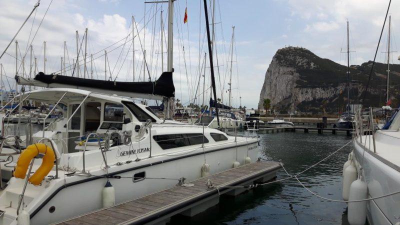 Meerkat vor Gibraltar