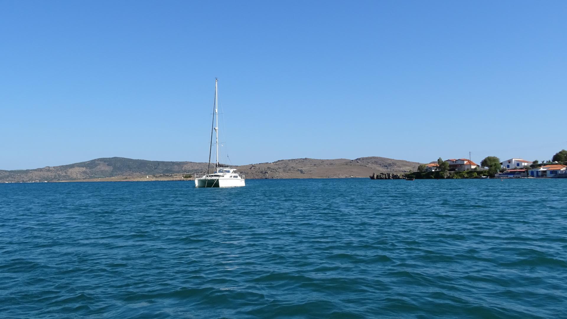 Meerkat auf Lesbos