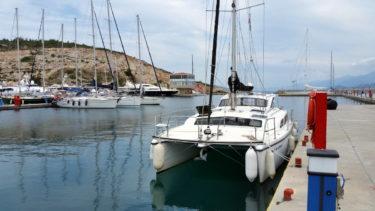 Meerkat in der Samos-Marina