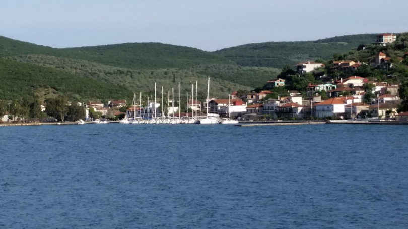 Klein-Meerkat im Hafen von Achillio