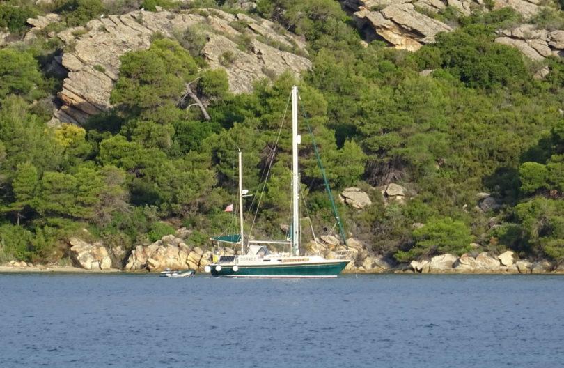 Dorado in der Bucht von Dimitraki